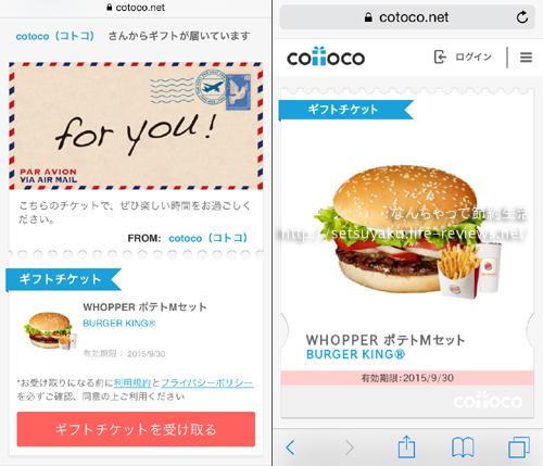 cotoco01.jpg